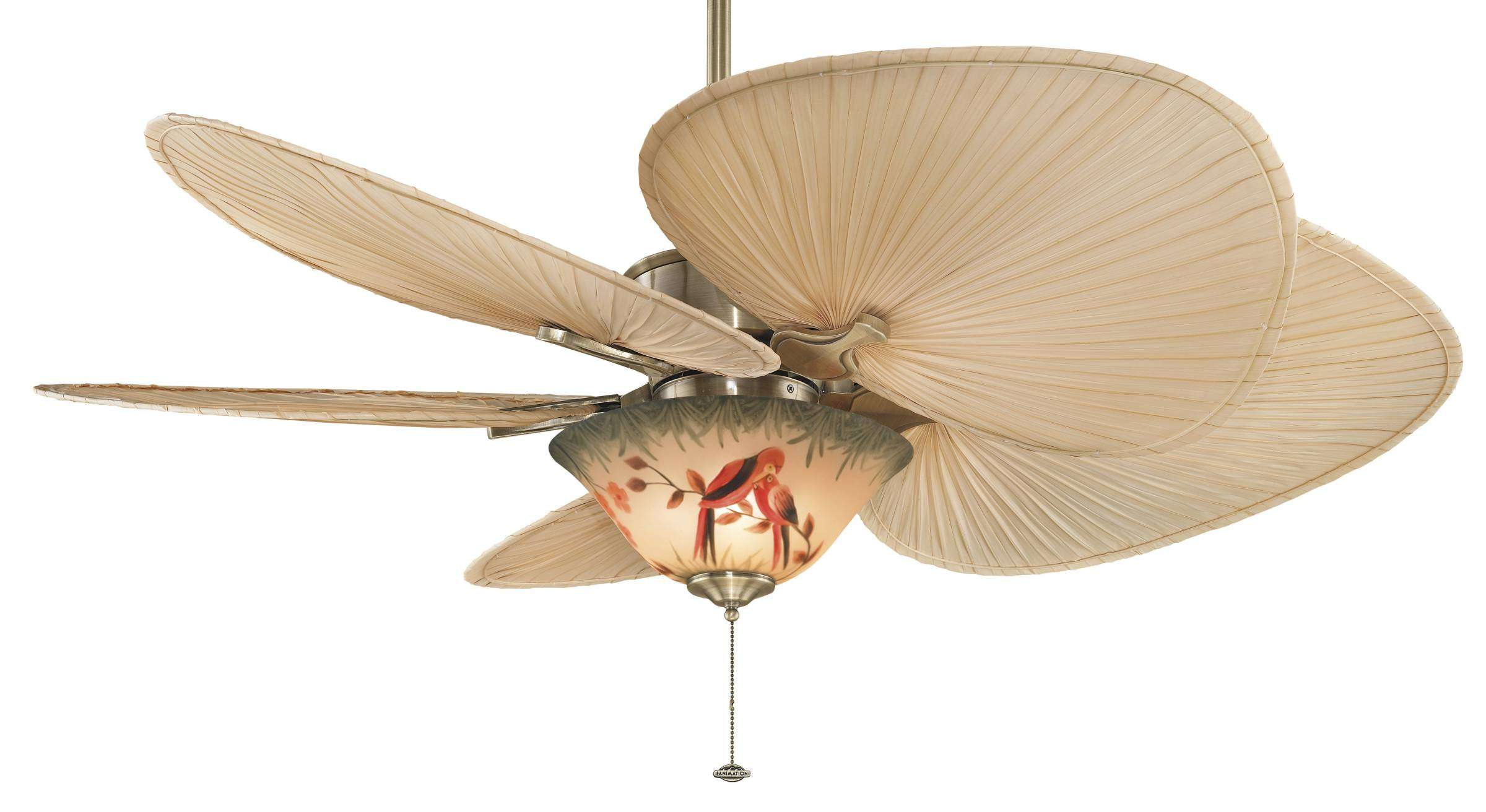 Fanimation Islander Ceiling Fan Model Fa Fp320ab1 In Antique Brass