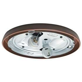 99256 Low Profile Fan Light Maiden Bronze