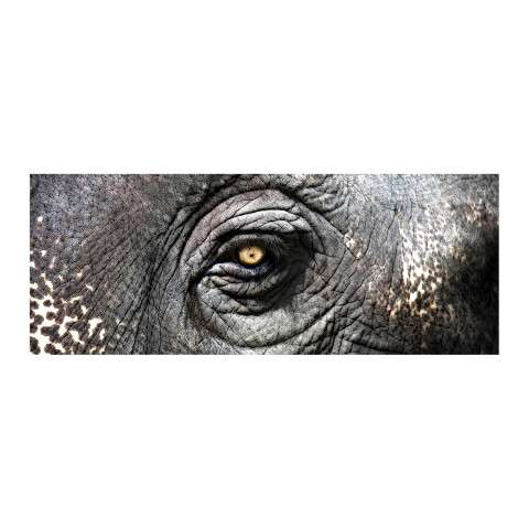 Canvas Wall Art - Exclusive Gianni Rusconi Print On Canvas - Canvas and Wood